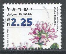 Israel 2007. Scott #1701 (U) Medicinal Herb, Coridothymus Capitatus - Israel