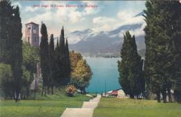 Lago Di Como - Dintorni Di Bellagio  (5067) - Como