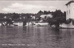 Lago Di Como - Pescallo Di Bellagio (115-175) - Como