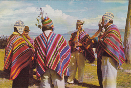 BOLIVIA - Titicaca Lake - Native Flute Players - Bolivie
