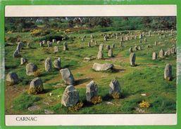 LE MENEC - Période Néolithique (entre 5000 Et 2000 Ans B. J.C.) - CARNAC - (Morbihan) France - Carnac