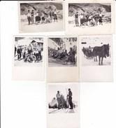 STELVIO - SONDRIO  - LOTTO DI SEI PICCOLE FOTO ANNI 1936 E ANNI 40 CON SLITTA TRAINATA DA CAVALLO - Lieux