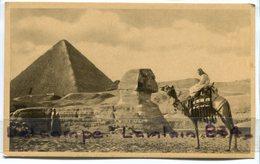 - EGYPTE - Cairo - Sphinx - Pyramide De Chéops  ( Kéops ), Petit Format - Kamel, Animation,  Non écrite, BE, Scans. - Pyramids