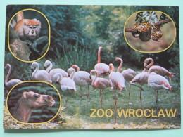 "Poland 1990 Postcard """"zoo Wroclaw - Monkey - Python Snake - Camel - Birds Flamingo"""" To Krosno - Flower - Archaeology H - Pologne"