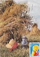 AGRICULTURE,wheat Ear , MAXIMUM CARD, 1970, ROMANIA. - Landbouw