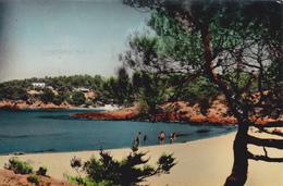 Carte Postale De Ibiza. Scan R/V. - Ibiza
