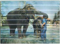 Elefanten - Hologrammkarte - Visiorelief - Ansichtskarten