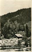 Waldheimat Alpl Bei Krieglach - Waldschule 1949 (001110) - Other