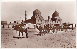 Carte Postale De Le Caire, Cairo, Egypte, Scan R/V. - Le Caire