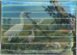 Vögel - Hologrammkarte - Visiorelief - Ansichtskarten