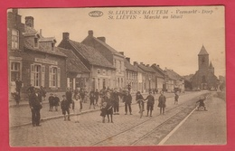 St. Lievens-Houtem - Veemarkt - Dorp ...  Top Geanimeerd ( Verso Zien ) - Sint-Lievens-Houtem