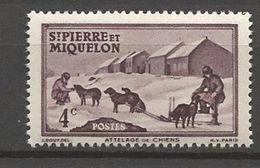 ST PIERRE ET MIQUELON  N° 291 NEUF** LUXE SANS  CHARNIERE / MNH - St.Pedro Y Miquelon