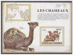 0378 Comores 2009 Kameel Camel Chameaux S/S MNH Imperf - Timbres