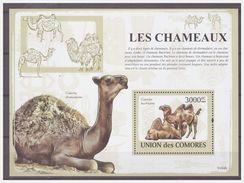 0379 Comores 2009 Kameel Camel Chameaux S/S MNH - Timbres