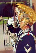 Carabinieri - Guardie Del Presidente Della Repubblica - Formato Grande  Non Viaggiata – Ar - Militaria