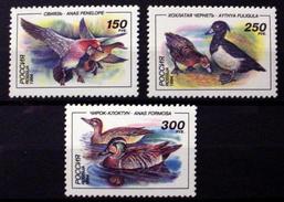 RUSSIA # 6220-6222. Ducks.   MNH (**) - 1992-.... Föderation