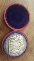 Médaille En Argent Massif Angelo Concours Agricole Avec Boite - Professionali / Di Società