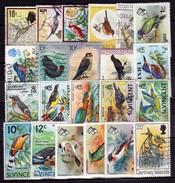 Bermuda & Andere Karibik, 22 Versch. Vögel - Bermuda