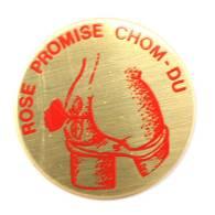 Pin's Politique ... ROSE PROMISE CHOM DU - Rose Socialiste - Fesses Nues  -  G698 - Pin's