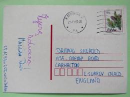 Poland 1997 Postcard Katowice To England - Pinecones Pinus - 1944-.... Republic