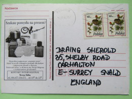 Poland 1998 Postcard Gifts - Prudnik To England - Pinecones Larix - 1944-.... Republic