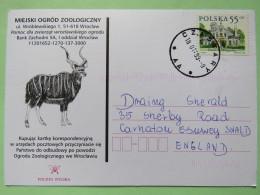 Poland 1999 Postcard Miejski Ogrod Zoo - Antelope - Czastary To England - Country Estates Oblegorku - 1944-.... Republic