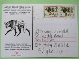 Poland 1999 Postcard Miejski Ogrod Zoo (fox) To England - Country Estates Lopusznej - Pinecones Larix - 1944-.... Republic