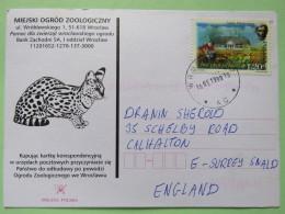 Poland 1999 Postcard Miejski Ogrod Zoo (wild Cat ? Or Genet) - Wroclaw To England - Adam Mickiewicz Poet Writer - 1944-.... Republic