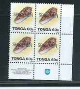 Tonga 1993 Marine Life Definitives 60s Shell Block Of 4 MNH Specimen O/P - Tonga (1970-...)