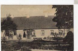 FRYDENDALGAARD PJEDSTED  Danmark - Danemark