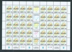 Tonga 1995 Marine Life Definitives 10s -> 80s 5 Full Sheets Of 40 MNH Specimen Overprint - Tonga (1970-...)
