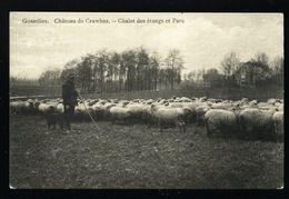 Gosselies. Château De Crawhez. Chalet Des étangs Et Parc.  Berger Et Moutons. **** - Charleroi