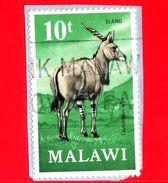 MALAWI - Usato - 1971 - Fauna - Antilope - Taurotragus Oryx Livingstonei - 10 - Malawi (1964-...)