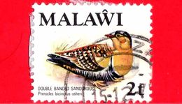 MALAWI - Usato - 1975 - Fauna - Uccelli - Double-banded Sandgrouse (Pterocles Bicinctus) - 2 - Malawi (1964-...)