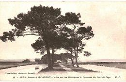CPA N°5350 - ARES - BASSIN D´ARCACHON - ALLEE DES RESERVOIRS A POISSONS DU PORT DE LEGE - Arès