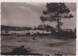 CORSE,CALVI,BALAGNE,VILLE DE RESISTANT ANTI FASCISTE,PENDANT LA GUERRE,carte Photo De TOMASI - Calvi