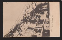 GB Postcard Royal Mission To Deep Sea Fishermen - Cleaning And Packing Fish - Royaume-Uni
