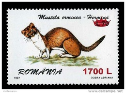 Romania 2000 Mih. 5465 Fauna. Ermine (overprint) MNH ** - Ungebraucht