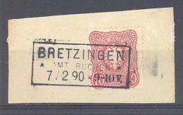 Reich  Michel # 41 Auf Briefstück  Mit Langstempel  BRETZINGEN Amt Buchen  7/2 90  9-10 V. - Oblitérés