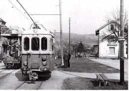 Automotrice Et Wagon De Travaux à Bressonnaz BVA / Vaud - Stations With Trains