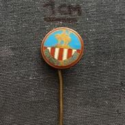 Badge (Pin) ZN005680 - Football (Soccer / Calcio) Czechoslovakia Viktoria Zizkov - Football