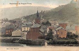 Prayon Trooz - Panorama (colorisée, Edit Jules Magnée, 1911) - Trooz