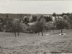 Ferrières ... Vue Bucolique Du Village - 1965 - Ferrières