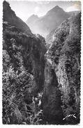 65 - St SAUVEUR - La Gorge Des Hollandais - éd. JOVE N° 843 - Tampon Pont Napoléon - France