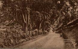 TUBBENDEN LANE ORPINGTON - Autres