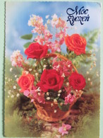 "Poland 1999 Postcard """"flowers Roses"""" Zluchow To England - Country Estates Oblegorku - Zodiac Gemini - Poland"