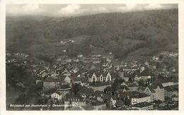 PIE 17-P Mo-4641 : WALDSHUT AM HOCHRHEIM GESAMTANSICHT - Waldshut-Tiengen