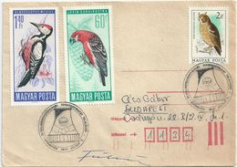 6073 Hungary SPM Economy Science Energy Electricity Industry Nature RARE - Electricité
