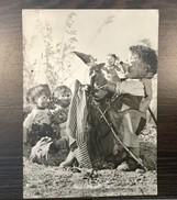 AK  MECKI - Mecki