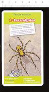 Araignée Animal Spider // IM 213/1 - Ohne Zuordnung